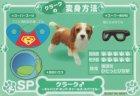 クローズアップ!1: [わたし犬ですか?] SP.スーパーワン