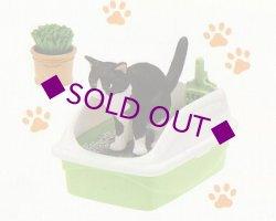 画像1: [うちの自慢のにゃんこ] 7.藤田さんちのおトイレ猫