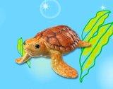 [海のどうぶつ〈水族館の人気者〉] 7.ウミガメ