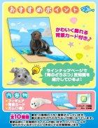 クローズアップ!3: [海のどうぶつ〈水族館の人気者〉] 8.マゼランペンギン