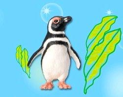 画像1: [海のどうぶつ〈水族館の人気者〉] 8.マゼランペンギン