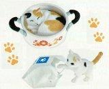 [うちの自慢のにゃんこ] 6.野村さんちのキッチン猫