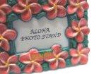 クローズアップ!1: [I LOVE HAWAII] 9.メイドインハワイ