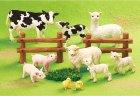 クローズアップ!1: [動物図鑑 のんびり牧場ライフ] 1.こうしとヒヨコ