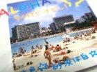 クローズアップ!3: [I LOVE HAWAII] 1.ワイキキビーチをお散歩