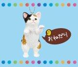 [きまぐれにゃんこマスコット] 9.おねだり(三毛猫)