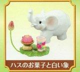 [おとぎの国のお菓子] 6.ハスのお菓子と白い象