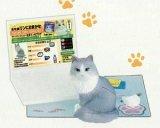 [うちの自慢のにゃんこ] 5.鈴木さんちのブログ猫